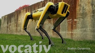 The Evolution Of Boston Dynamics' Robot Dogs