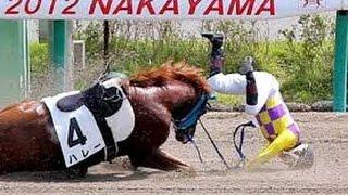競馬 痛々しい落馬事故