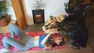 Try this Home Workout with your Dog