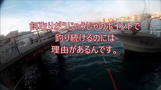【沖縄釣り】 糸満漁港(忍耐のポイントだ!)