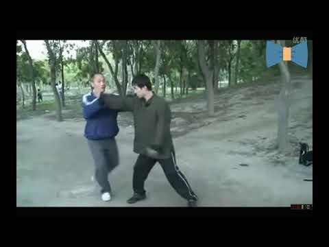 8методов атаки  в туйшоу. Чэнь тайцзи ушу // Master Chen Xiang 8 methods of attack in Tai Chi