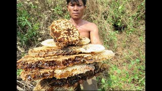 Awesome Cooking Bees    Recipe Delicious    Village Food Factory