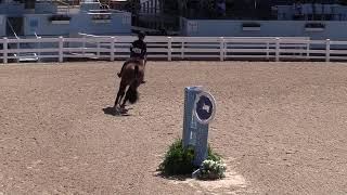 Video of SHOWCASE ridden by ALEXA AURELIANO from ShowNet!