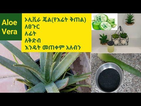 Tips to make a Aloe vera gel at home
