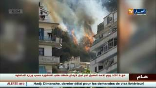 إندلاع حريق قرب مقام الشهيد في أعالي العاصمة