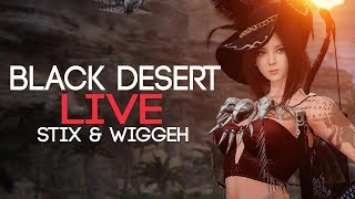 Our Leveling Journey Through The Black Desert Online MMORPG!
