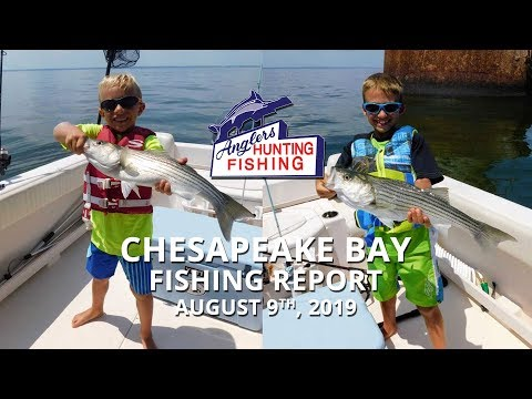 Chesapeake Bay Fishing Report - August 9th, 2019