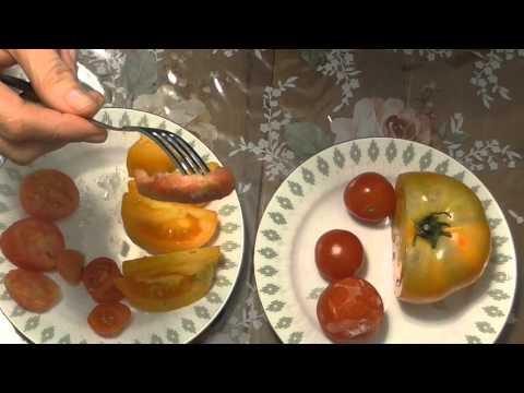 Что приготовить из помидоров на ужин