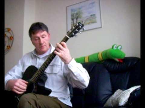 Meta Sequoia (Harry Sacksioni), Geert Janssen acoustic guitar