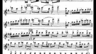 Shostakovich Violin Concerto No. 1 Op. 99 (II. Scherzo)(Hilary Hahn)