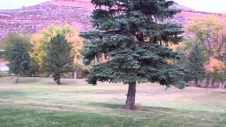 Eden Valley Colorado Lifestyle Center
