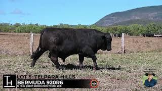 Lot 5 - Telpara Hills BERMUDA 920R6
