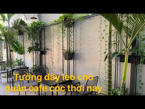 Kho Tư liệu Xây dựng – Tường dây leo đơn giản | Cách trang trí mảnh xanh cho quán cafe cóc
