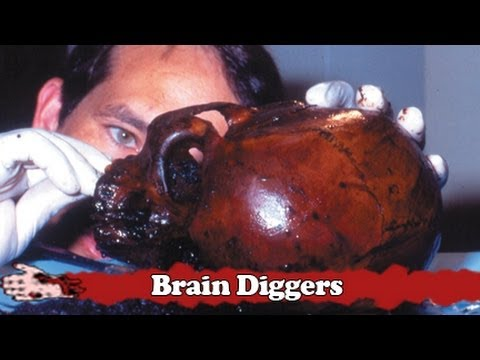 Brain Diggers - 7,000 year old mummy decapitation in Florida