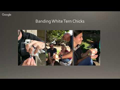 Theater Thursdays - Hawai'i Audubon Society - Outreach Talk #3