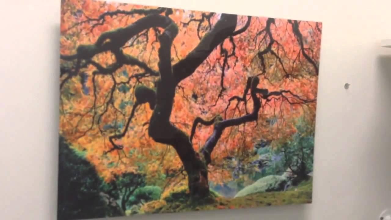 Japanese Maple Tree Metal Print Wall Art - YouTube