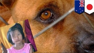 ニュージーランド北島のムルパラで、邦人の女児が闘犬4頭に襲われ、重...