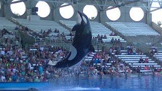 One Ocean(Full Show/HD) Aug 13 2016 - SeaWorld Orlando