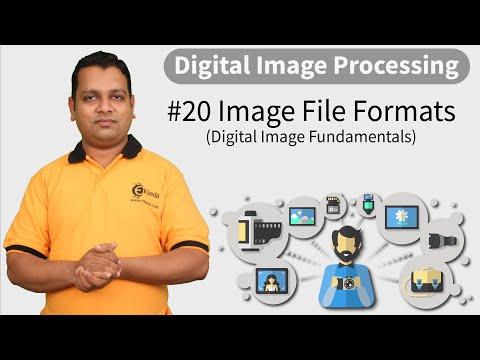 Image File Formats - Digital Image Fundamentals - Digital Image Processing