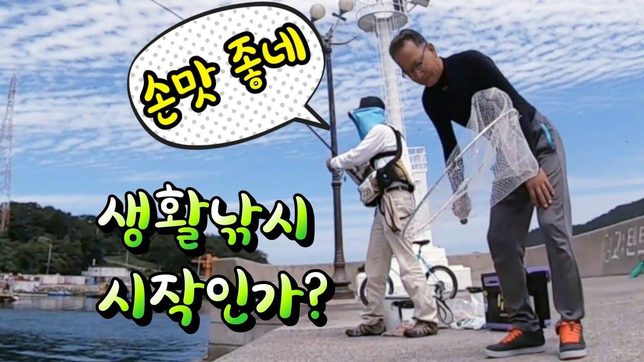 [통영로기] 210회 방파제에 반가운 어종 등장... (쉽게 재미있는 손맛 보자~)