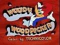 Cartoon Classics:  Woody Woodpecker-Pantry Panic
