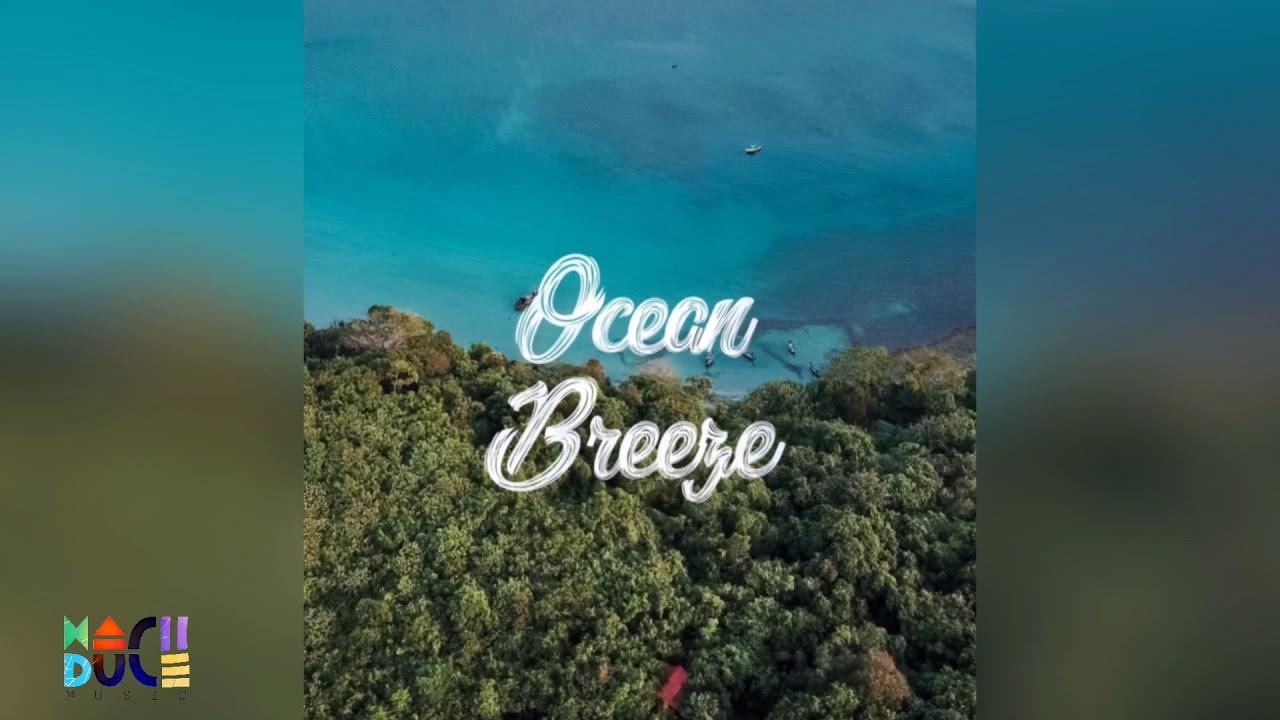 Download OCEAN BREEZE - prod. Mach Duce (#DavidoTypeBeat, #PartynextdoorTypeBeat)