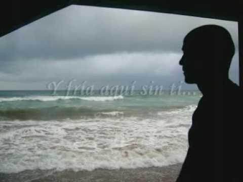I Love You - Sarah McLachlan (Subtitulado en Español)