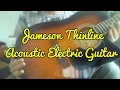 R.W. Jameson 900 Series Thinline Acoustic Electric Guitar Review