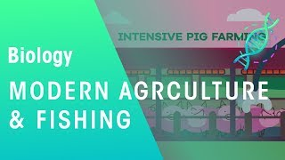 Modern agriculture and fishing | Ecology and Environment | Biology | FuseSchool