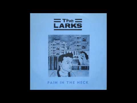 The Larks - Maggie Maggie Maggie (Out Out Out)
