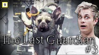 DETTE VAR SYKT NÆRME! EP 3 The Last Guardian
