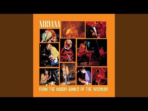nirvana breed live in london 1989