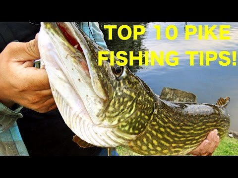 10 Tips To Help You Catch More Pike On Lures! Pike Fishing Tips And Techniques
