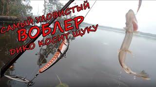 Самый Уловистый Воблер Рыбалка На Спиннинг Щука На Озере Рыбалка На Щуку