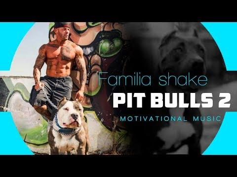 Familia Shake - Pit Bulls 2 (Prod. Zion D)