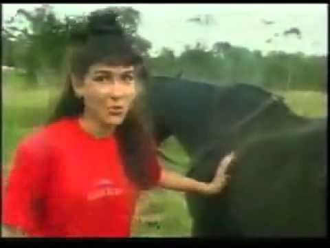סוס מזיין בחורה מפגשי סקס