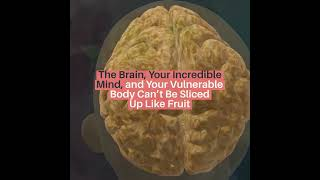 The Brain, Your Incredible Mind, and Your Vulnerable Body Can't Be Sliced Up Like Fruit