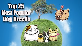Top 25 Most Popular Dog Breeds 2021 | Most Popular Dog Breeds In The World | Dog Breeds 101