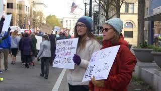Gun Protest Package- Rowan Zeidan