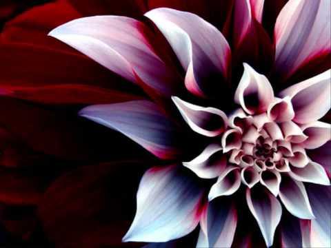 Vincent De Moor - Flowtation (Enrico Fermi remix)