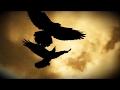 Sonne Hagal ~ The Three Ravens
