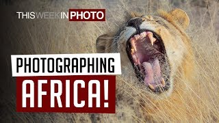 Photographing Africa with Martin Bailey