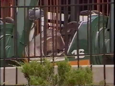 Kings Island Amusement Park Deaths