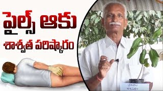 Amazing Benefits Of Ranapala Leaves || Cure Piles Naturally || Dr.Subbaraju || SumanTV Tree
