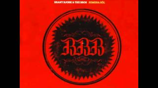 Brant Bjork and the Bros - Love Is Revolution