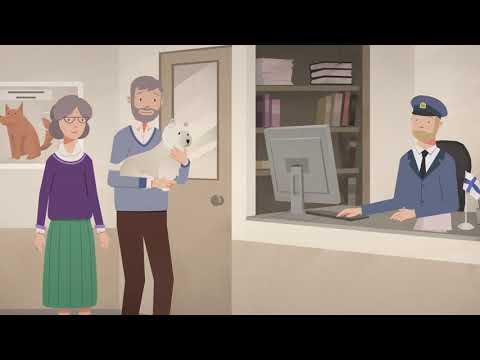 Инструкция: как путешествовать с домашним животным транзитом через территорию России