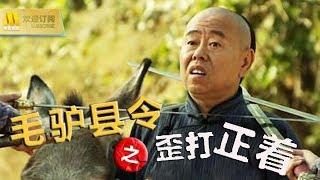 【1080P Full Movie】《毛驴县令之歪打正着》潘长江与贪官污吏展开斗争(潘长江 / 恬妞 / 张庭)