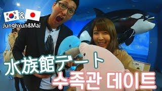 [日本/일본vlog] 名古屋港水族館でイルカに癒される..♡ / 나고야항 수족관에서 힐링데이트^^