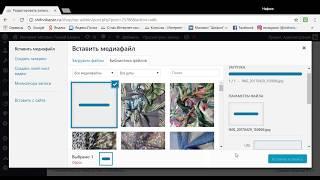 Видео урок: Размещение записи, загрузка товара на сайт WpShop в WordPress