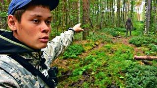Вот что можно найти в лесу...Сбор грибов летом (Лисички пошли) - Архив